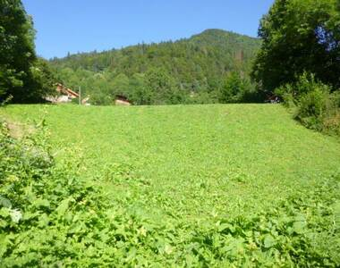 Vente Terrain Bellevaux (74470) - photo