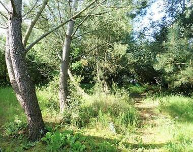 Vente Terrain 1 592m² TALMONT-SAINT-HILAIRE - photo