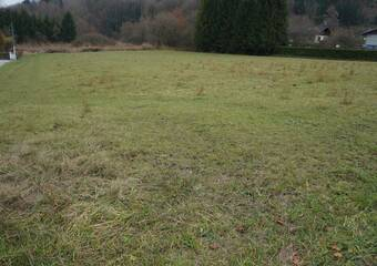 Vente Terrain 989m² Vougy (74130) - photo