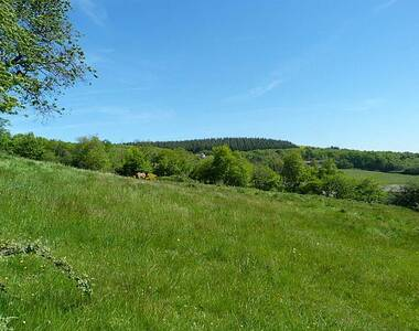 Vente Terrain 13 000m² Cluny (71250) - photo