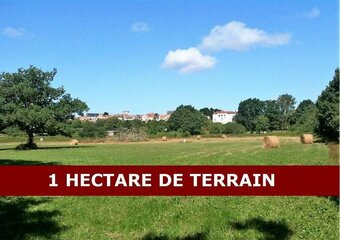 Sale Land 11 100m² lege - photo