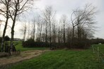 Sale Land 20 000m² rocheserviere - Photo 8
