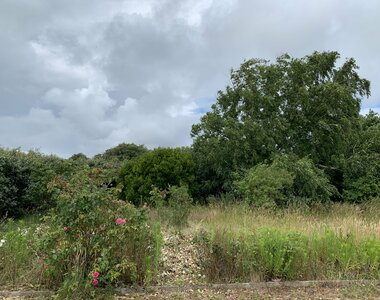 Sale Land 511m² talmont st hilaire - photo