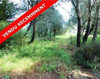 Sale Land 1 592m² talmont st hilaire - photo