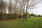 Sale Land 20 000m² rocheserviere - Photo 9