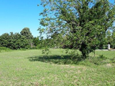 Vente Terrain 3 105m² la ronde - photo