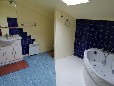 Vente Maison 7 pièces 178m² st sauveur d aunis - Photo 8