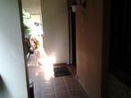 Vente Appartement 5 pièces 100m² CHILLY MAZARIN - Photo 7