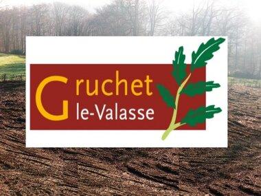 Vente Terrain 1 032m² GRUCHET LE VALASSE - photo