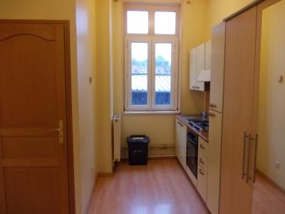Location Appartement 1 pièce 20m² Douai (59500) - Photo 3