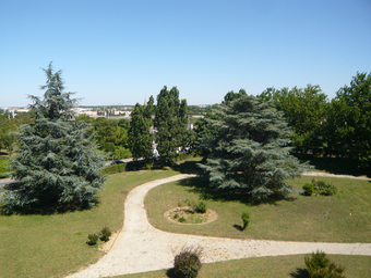 Vente Appartement 2 pièces 49m² La Rochelle (17000) - photo