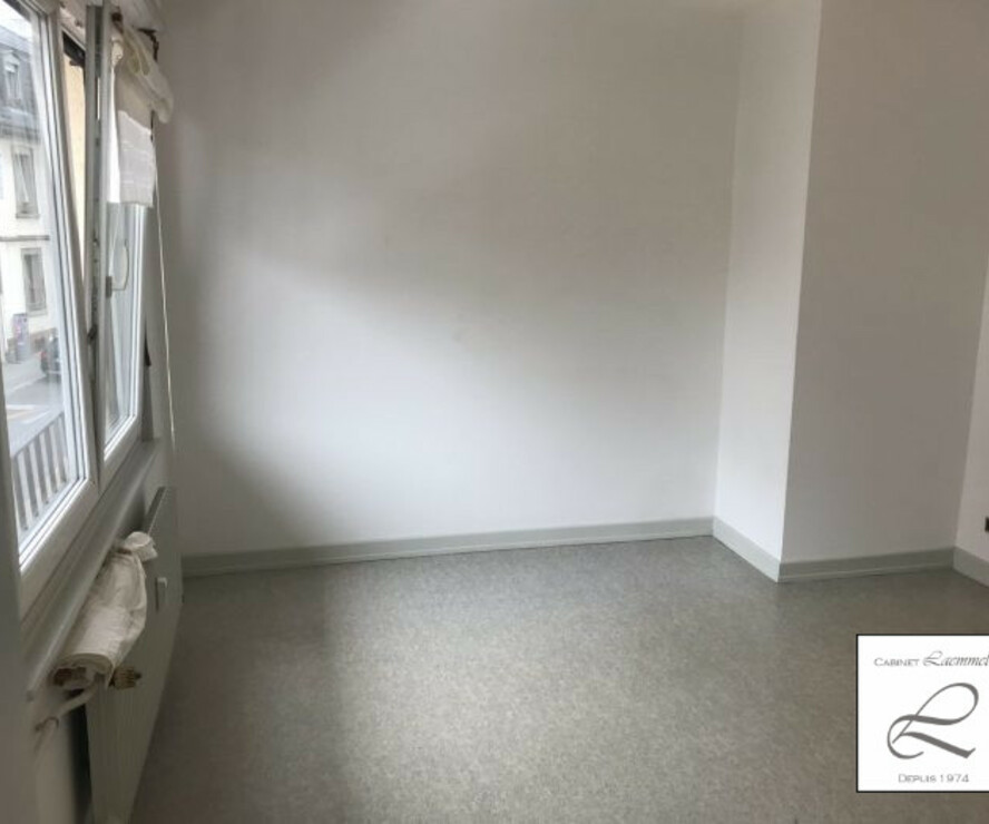 Location Appartement 2 pièces 49m² Schiltigheim (67300) - photo