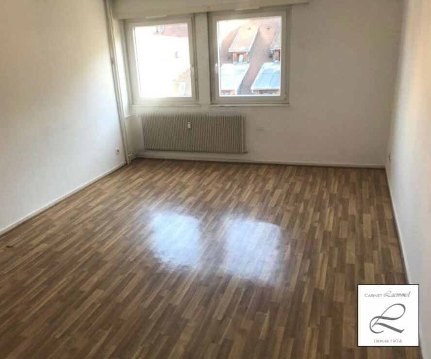 Location Appartement 2 pièces 47m² Strasbourg (67000) - photo