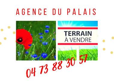 Vente Terrain 1 038m² Saint-Pierre-le-Chastel (63230) - photo