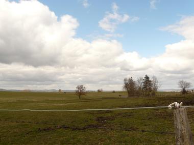 Vente Terrain 1 367m² VERNINES - photo