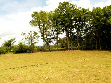 Vente Terrain 1 200m² Bromont-Lamothe (63230) - photo