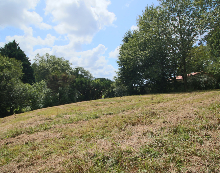 Vente Terrain 2 003m² VILLEFRANQUE - photo