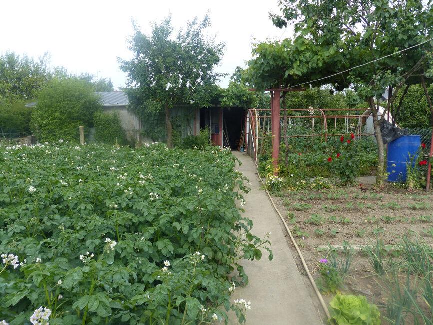 Vente maison 4 pi ces saint barthelemy d anjou 162507 for Les 5 jardins saint barthelemy d anjou