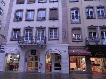 Location Appartement 1 pièce 41m² Strasbourg (67000) - Photo 1