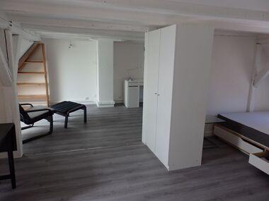 Location Appartement 1 pièce 28m² Strasbourg (67000) - photo