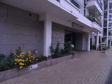 Location Appartement 3 pièces 92m² Strasbourg (67000) - photo