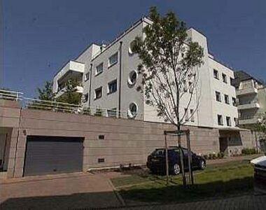 Location Appartement 4 pièces 122m² Strasbourg (67000) - photo