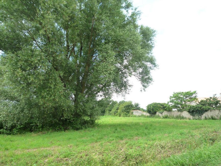 Sale Land Arthon En Retz 44320 127177