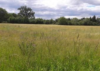 Vente Terrain 2 400m² Romagnat (63540) - Photo 1