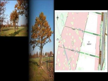 Vente Terrain 2 597m² Venansault (85190) - photo