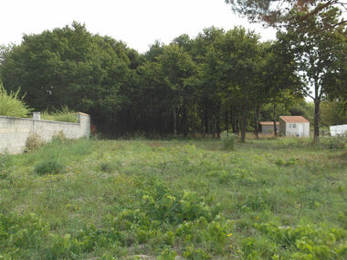 Vente Terrain 1 306m² Arvert (17530) - photo