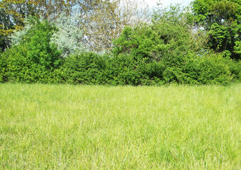 Vente Terrain 444m² Arvert (17530) - Photo 1