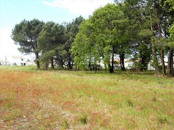 Vente Terrain 495m² Les Mathes (17570) - Photo 1