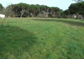 Vente Terrain 397m² Les Mathes (17570) - Photo 1