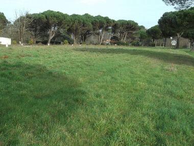 Sale Land 397m² Les Mathes (17570) - photo