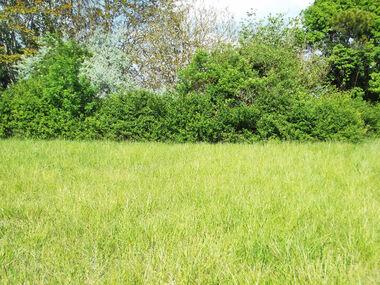 Sale Land 273m² Arvert (17530) - photo