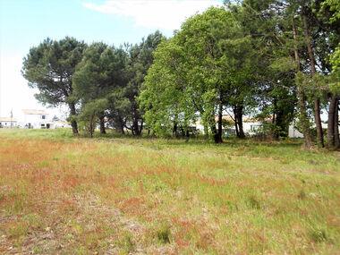 Vente Terrain 464m² Les Mathes (17570) - photo