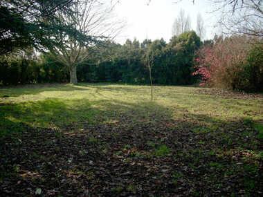 Sale Land 1 room 2 297m² Arvert (17530) - photo