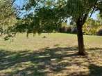 Sale Land 646m² Rambouillet (78120) - Photo 2