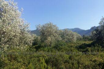 Sale Land 8 370m² Argelès-sur-Mer (66700) - photo