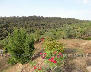 Vente Terrain 1 800m² Le Boulou - photo