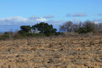 Vente Terrain 9 600m² Passa (66300) - Photo 5