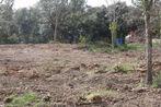 Sale Land 1 472m² Taillet (66400) - Photo 2
