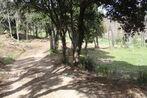 Sale Land 1 472m² Taillet (66400) - Photo 6