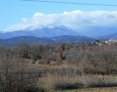 Sale Land 9 600m² Passa (66300) - photo