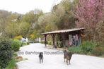Sale House 7 rooms 115m² Serralongue (66230) - Photo 2