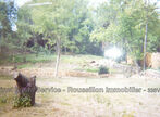 Sale Land 5 660m² Le Boulou (66160) - Photo 4