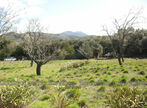 Vente Terrain 2 750m² Maureillas-las-Illas (66480) - Photo 2
