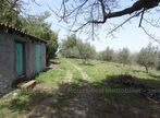 Vente Terrain 13 879m² Céret (66400) - Photo 6