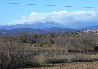 Vente Terrain 9 600m² Passa (66300) - photo