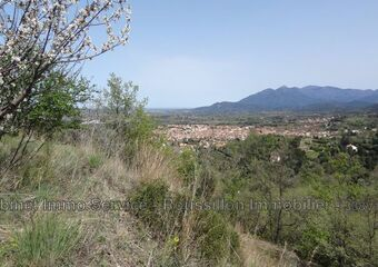 Vente Terrain 13 879m² Céret (66400) - photo